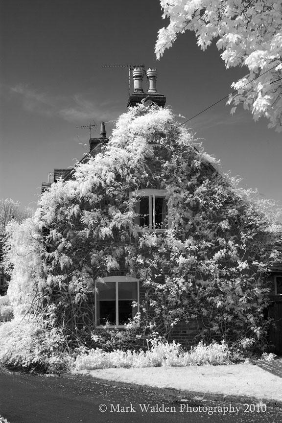 Ivy House Alrewas